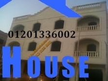 1356998514734-copy